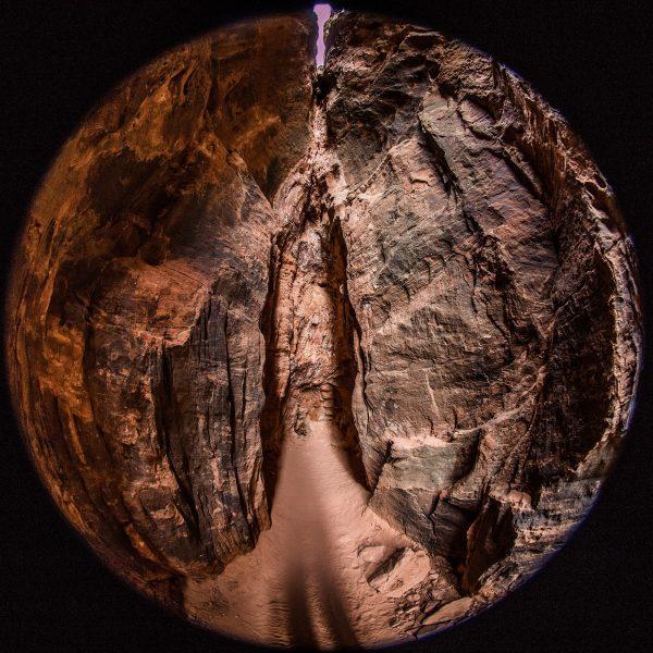 Portal of Venus - Joel Simpson