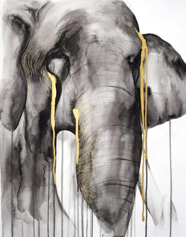 stefanie_demas_elephant