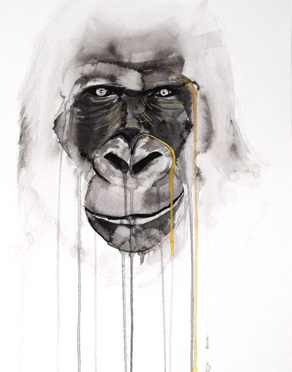 stefanie_demas_gorilla