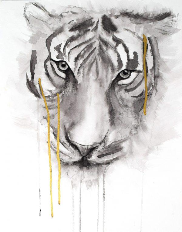 stefanie_demas_tiger