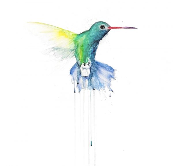 stefanie-demas_hummingbird