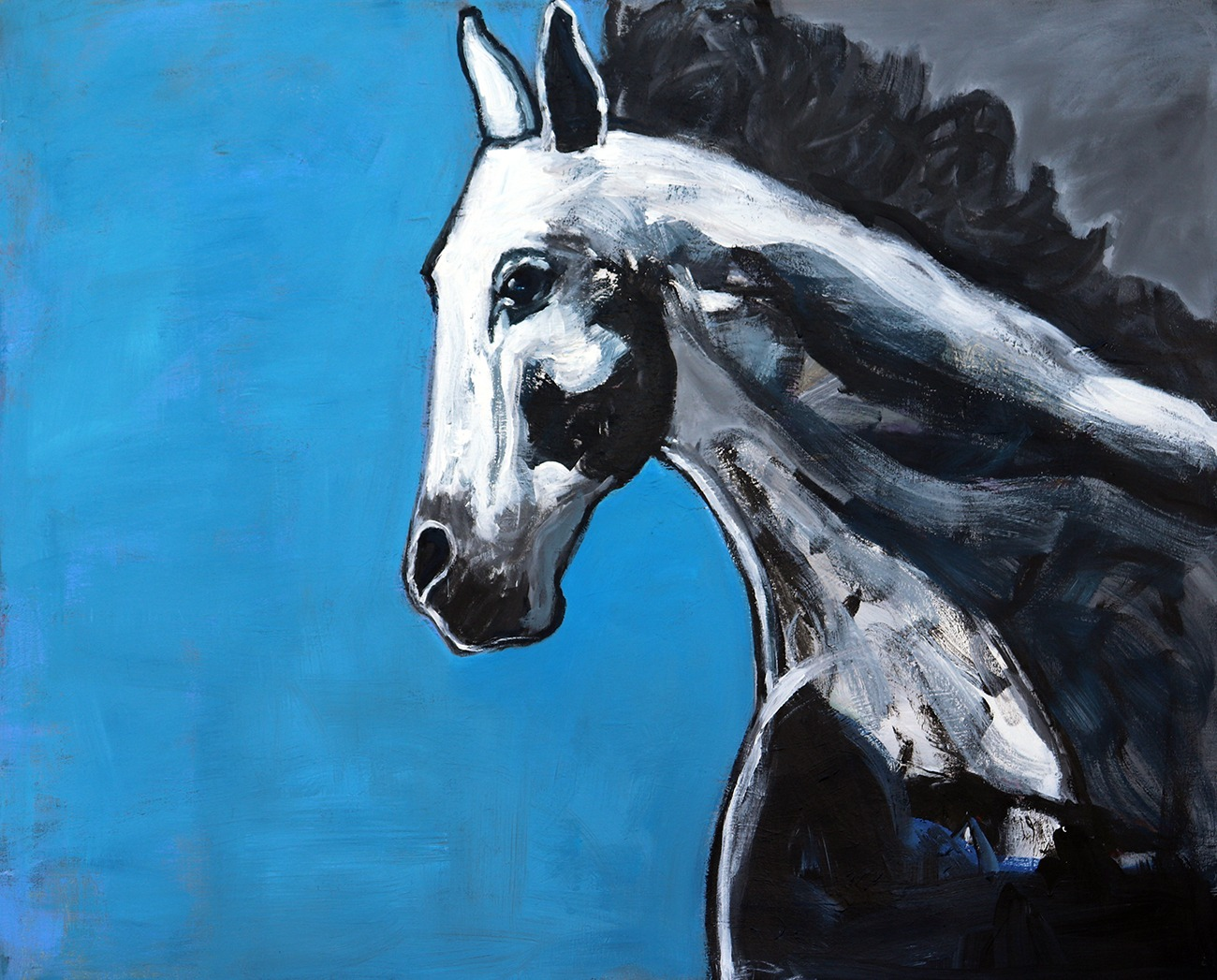 Horse with Blue
