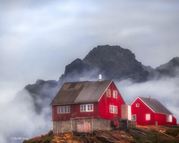 red-house-maddi-ring