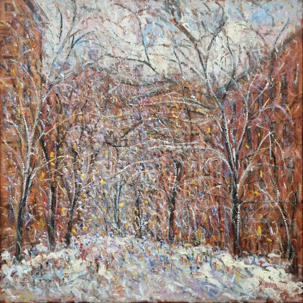 New York, Snow - samir sammoun