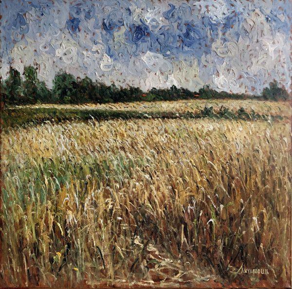 Champ de blé, St-Philippe - samir sammoun